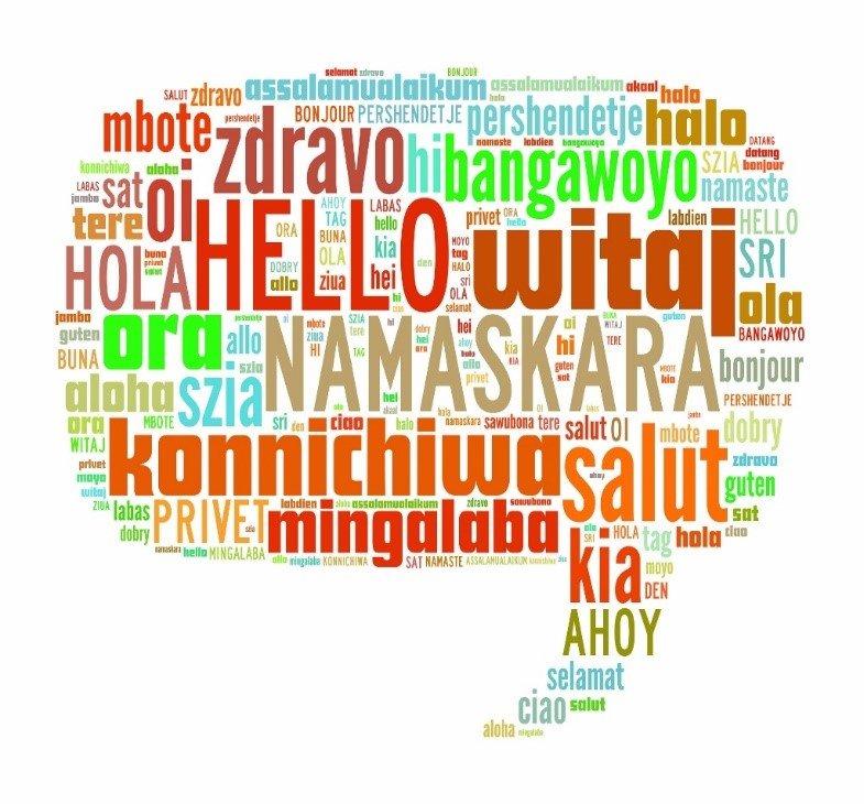 vertaalprogramma zinnen
